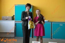 Монопородная выставка русской цветной болонки
